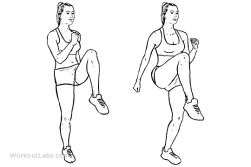High_Knees_F_WorkoutLabs.png
