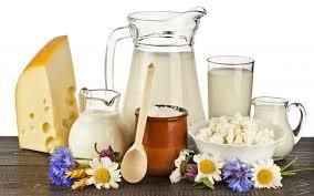 produk dairy